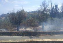 Catania, incendio all'interno del Parco di Monte Po