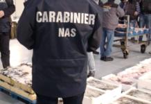 blitz al mercato ittico di aci trezza